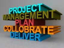 Zarządzanie Projektem plan ilustracja wektor