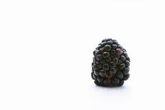 Zarzamora en el fondo blanco Fruta negra Imagenes de archivo