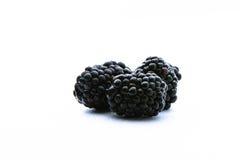 Zarzamora en el fondo blanco frutas negras Fotos de archivo