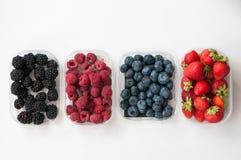 Zarzamoras de las fresas de las frambuesas de los arándanos imágenes de archivo libres de regalías