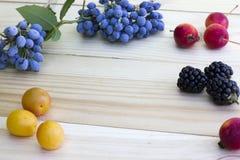Zarzamoras, manzanas, ciruelos y bayas negros Fotografía de archivo