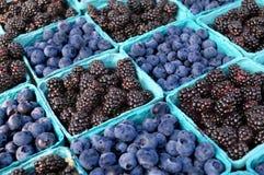 Zarzamoras y arándanos en el mercado de los granjeros. Fotos de archivo libres de regalías