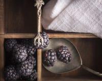 Zarzamoras y artículos de cocina del vintage en caja vieja Fotografía de archivo libre de regalías