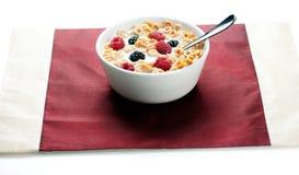 Zarzamoras y leche de los cereales en el tazón de fuente 02 Fotos de archivo