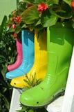 Zasadzający kwiaty i warzywa w starych plastikowych butach kreatywnie Fotografia Royalty Free