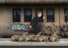 Zatłoczony miasto, szczur rasa, szczury zdjęcia stock