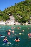 Zatłoczony snorkeling punkt blisko wolności plaży koh Tao Tajlandia fotografia stock