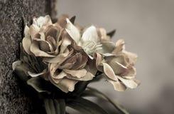 zatarci kwiaty Obrazy Stock