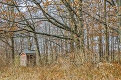 Zatarty Czerwony Outhouse Zdjęcie Stock