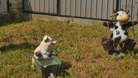 Zatarty ogród przyćmiewa w frontowym jardzie zdjęcie wideo