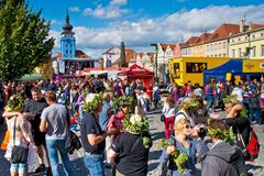 ZATEC TOWN,  CZECH REPUBLIC - September 5, 2015: People with hop. S wreath on the head. Zatec Hops and Beer Festival Royalty Free Stock Photography
