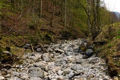 Zatoczka bez wody z kamieniami Zdjęcie Stock