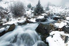 zatoczki mgły zima Fotografia Stock