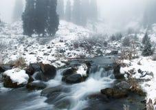 zatoczki mgły zima Obraz Royalty Free