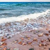 Zatoka Aqaba wybrzeże na Czerwonym morzu w zima ranku Fotografia Royalty Free