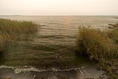Zatoka blisko Ahrenshoop Fotografia Stock