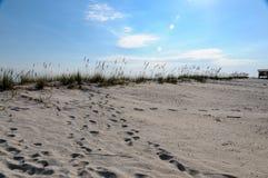 Zatoka brzeg Fotografia Royalty Free
