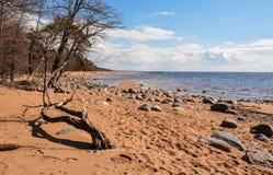 zatoka finlandia Zdjęcie Royalty Free