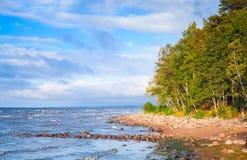Zatoka Finlandia, krajobraz z nabrzeżnymi kamieniami Zdjęcie Royalty Free
