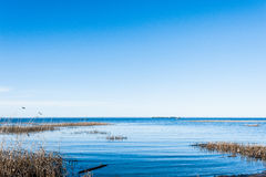 Zatoka Finlandia widok Obraz Royalty Free