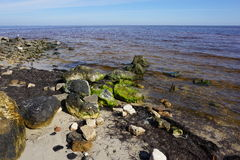 Zatoka Meksykańska Obraz Royalty Free