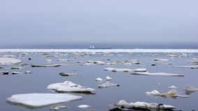 Zatoka Nagaev, wiosna/ Fotografia Royalty Free