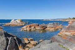Zatoka ogienie Turkus nawadnia z pomarańczowym liszaju dorośnięciem na grą Zdjęcia Royalty Free