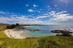 zatoka podpala Tasmania Biała piasek plaża z piękny scenicznym Obraz Royalty Free