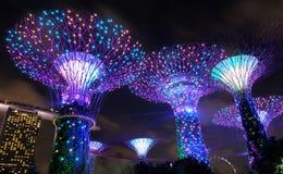zatoka uprawia ogródek Singapore Zdjęcie Royalty Free