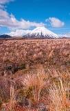 zatracenia góry ngaurohoe Fotografia Royalty Free