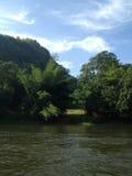 Zattera verde del campo sulla riva del fiume Fotografia Stock Libera da Diritti