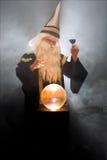 Zauberer, der mit Wein röstet Stockfotografie
