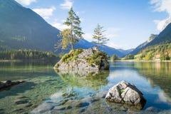 Zauberwald nel lago Hintersee vicino a Ramsau alla terra di Berchtesgadener Fotografia Stock Libera da Diritti