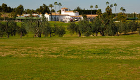 Zaudin club golf. Zaudin golf course, located  just a 10 minutes drive of the center of Seville, in the zone of the Aljarafe. It was designed by Gary Player Royalty Free Stock Photography
