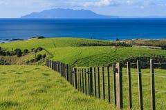Zaun über Wiesen an Tawharanui-Park lizenzfreie stockfotografie
