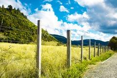 Zaun auf Bauernhof in der Landschaft am sonnigen Tag Überwucherte grüne Rasenfläche stockfotografie