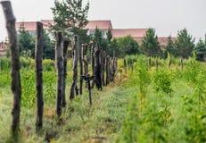 Zaun auf dem Ackerland Stockbild