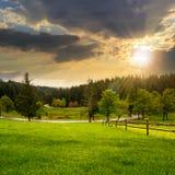 Zaun auf Wiese nahe Wald bei Sonnenuntergang Stockfotografie