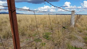 Zaun Australian Landscape stock video