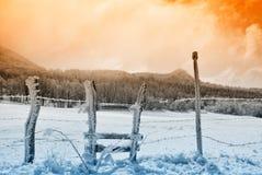 Zaun bedeckt mit Eis Stockbild