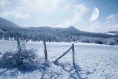 Zaun bedeckt mit Eis Lizenzfreies Stockfoto