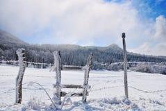 Zaun bedeckt mit Eis Lizenzfreie Stockfotos