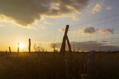 Zaun an der Grenze Stockfoto