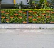 Zaun in der natürlichen Art Lizenzfreies Stockfoto