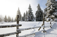 Zaun in der Winter Landschaft Lizenzfreies Stockbild