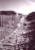 Zaun, der zu Cape- Codstrand führt Stockfotos