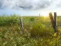 Zaun des alten Landes auf dem Grasland stockfotos