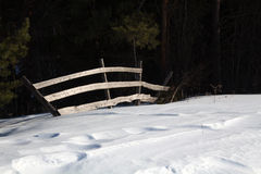 Zaun in einem Wald Stockfoto