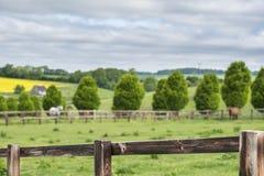 Zaun in einer englischen Landschaft Lizenzfreie Stockfotos