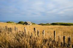 Zaun entlang goldenem Feld mit altem Stall Lizenzfreie Stockbilder
